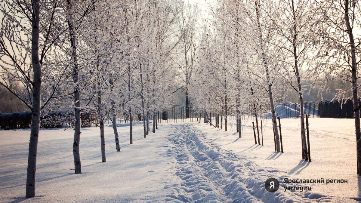 В школах Ярославской области продлевают каникулы