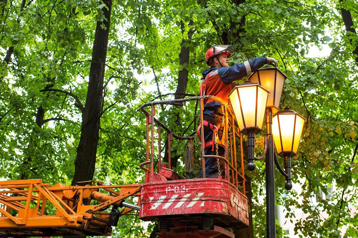 Сильный ветер и упавшие деревья оставили несколько сотен жителей Ярославской области без света