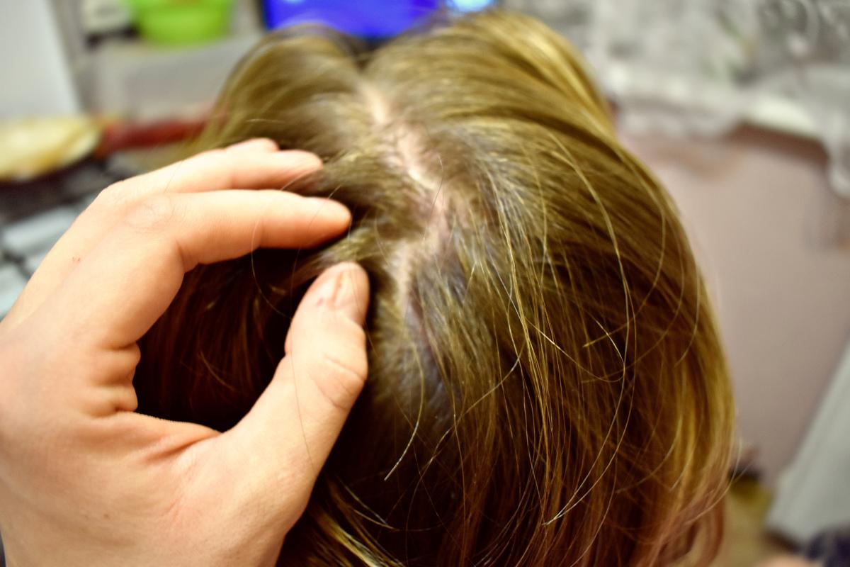 В Ярославле парикмахера обокрал постоянный клиент