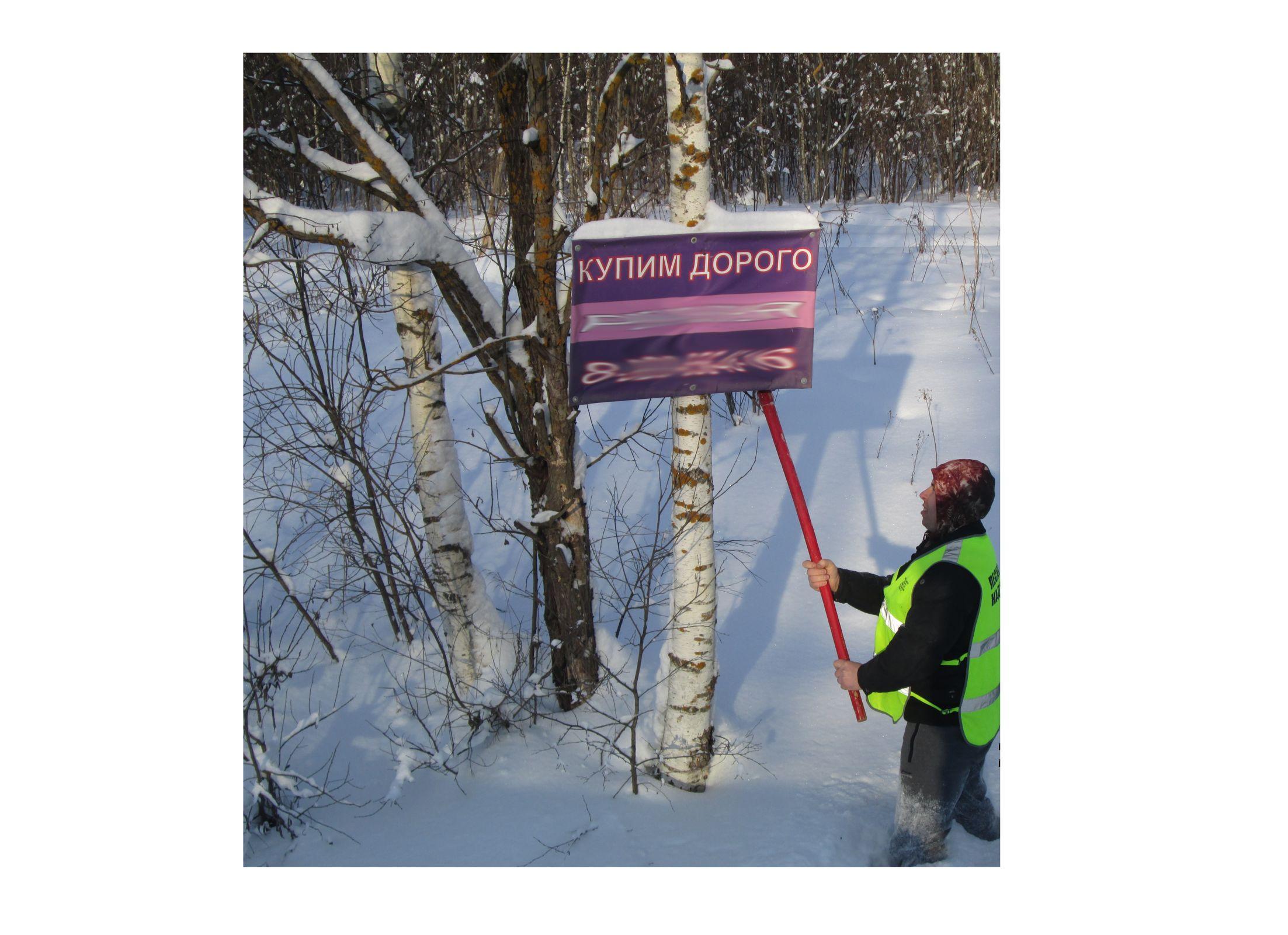 Более 50 рекламных конструкций демонтировали с деревьев с начала года