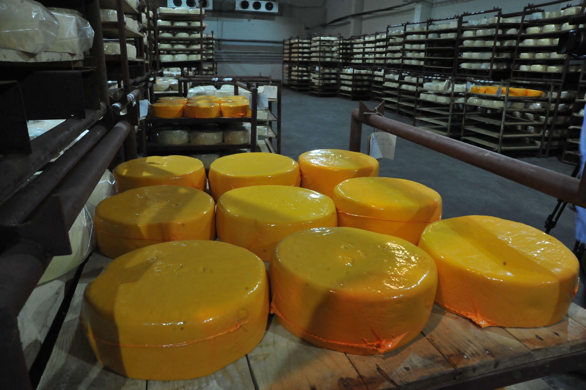 Магазин в центре Ярославля уличили в торговле санкционным просроченным сыром