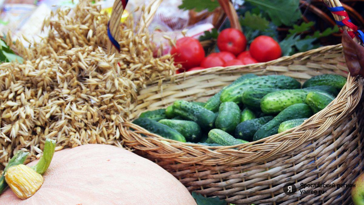 Создание сельхозкооператива нового формата предложил включить в программу «10 точек роста» фермер из Брейтова