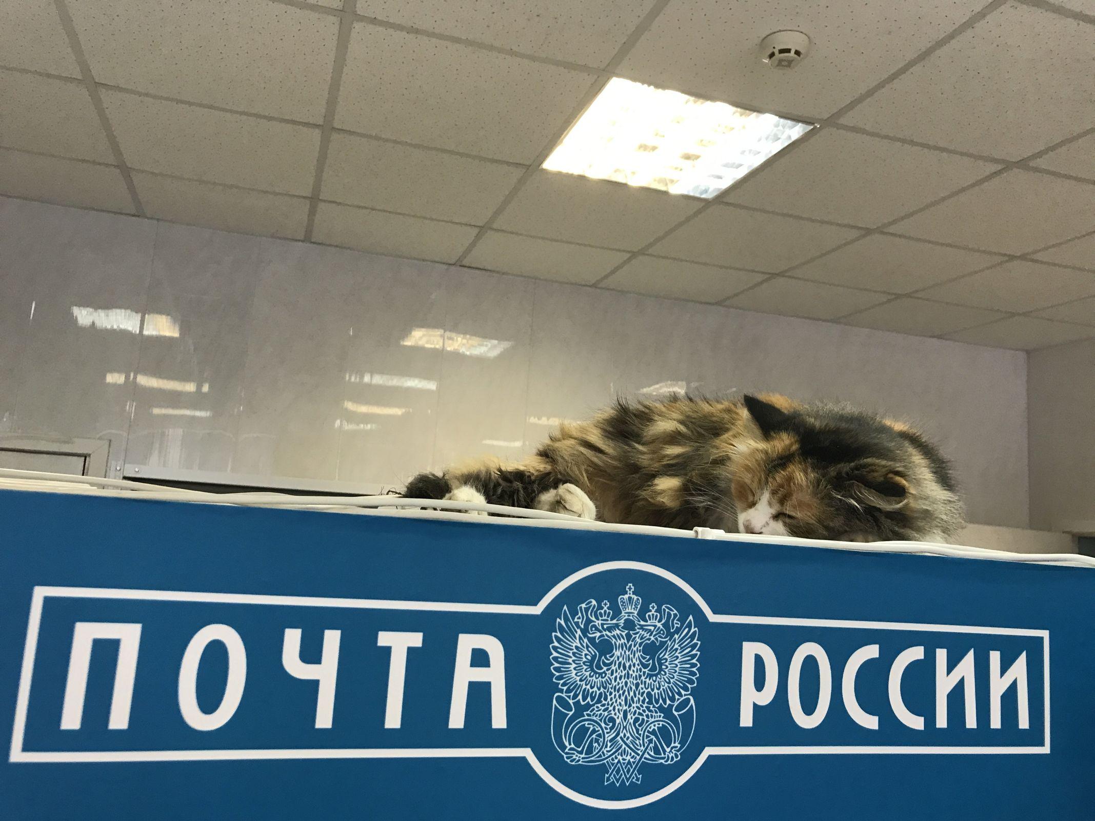 В Рыбинске пенсионер взял в заложники двух почтальонов: подробности ЧП