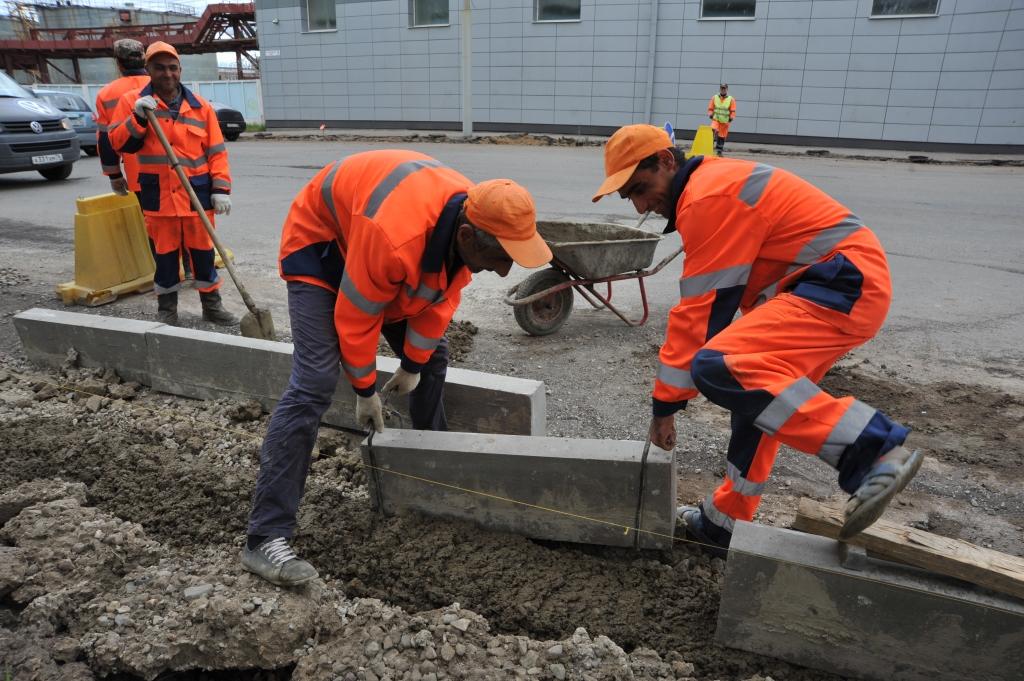 Власти Ярославля объяснили, зачем спилили деревья на проспекте Дзержинского