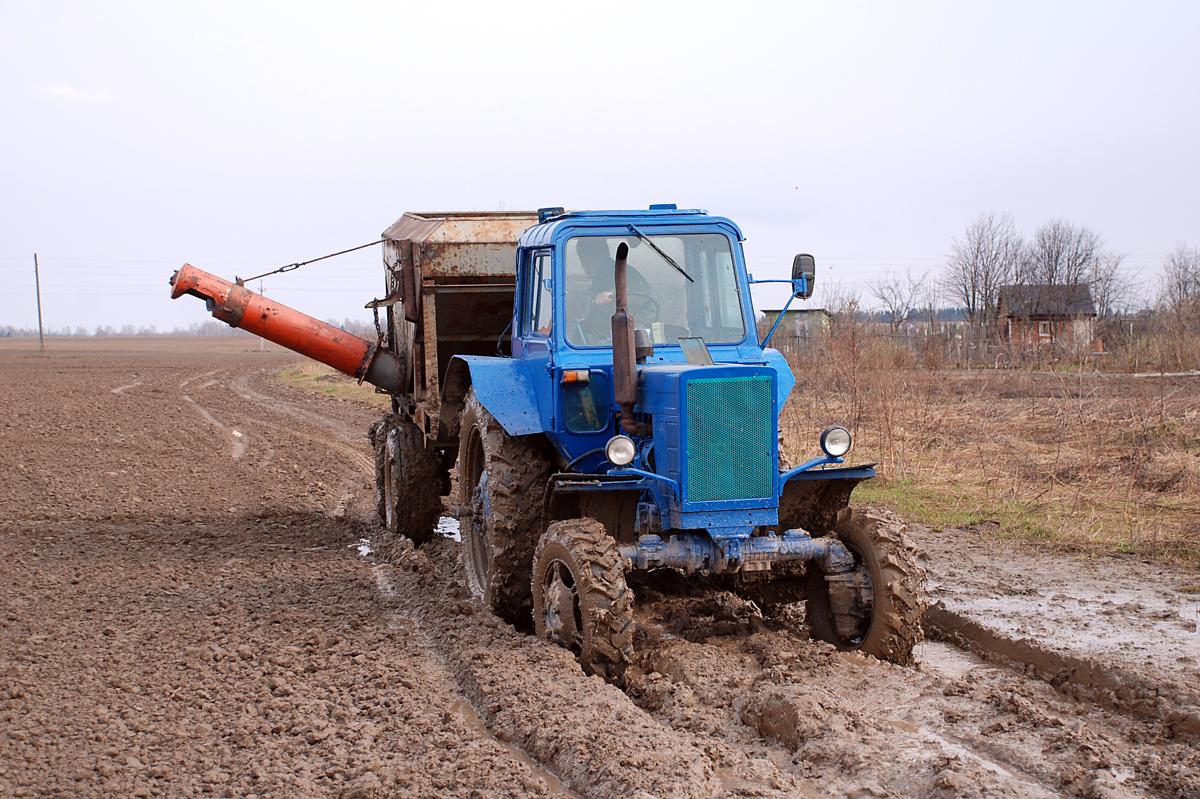 Ярославская область – в лидерах ЦФО по урожайности овощей и картофеля