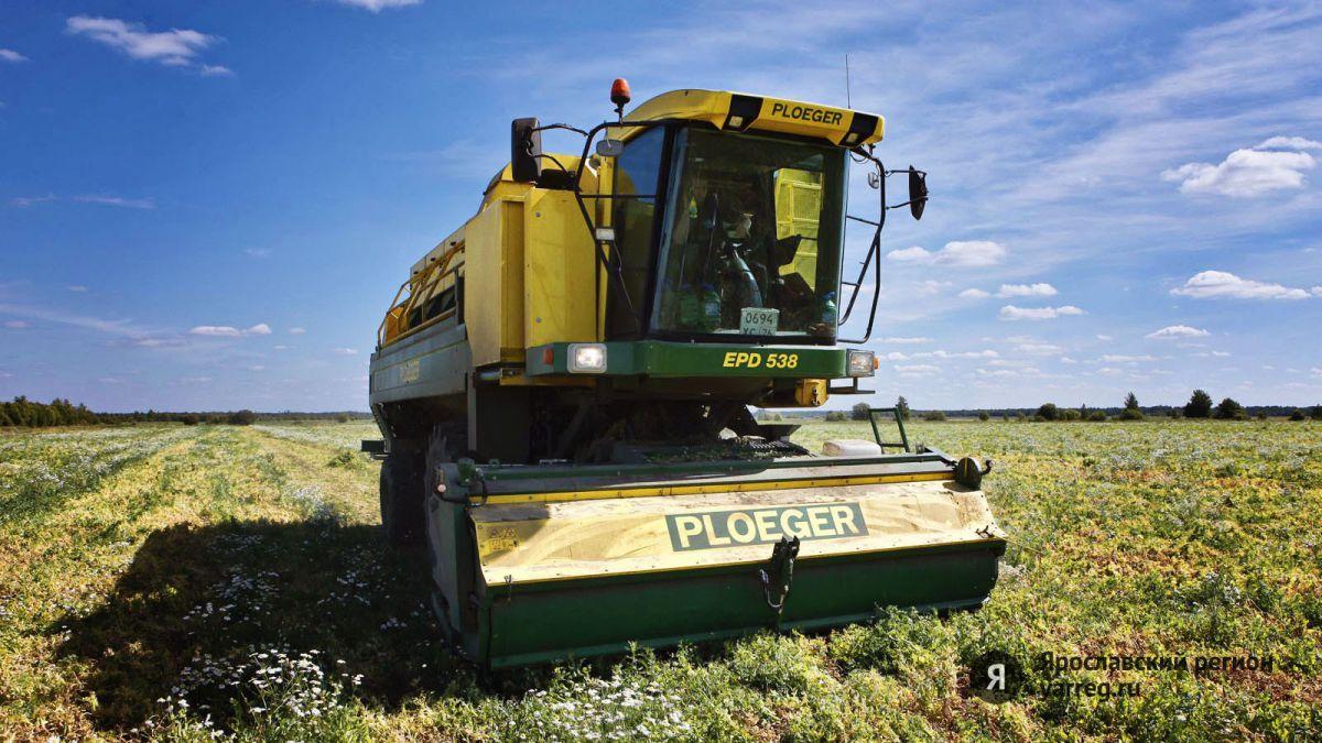 Ярославские фермеры получат на развитие своих хозяйств почти 40 миллионов рублей