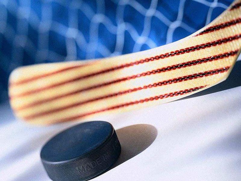 В Ярославле состоится бесплатный хоккейный матч