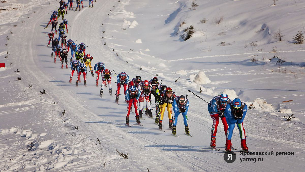 В Ярославле пройдет День зимних видов спорта