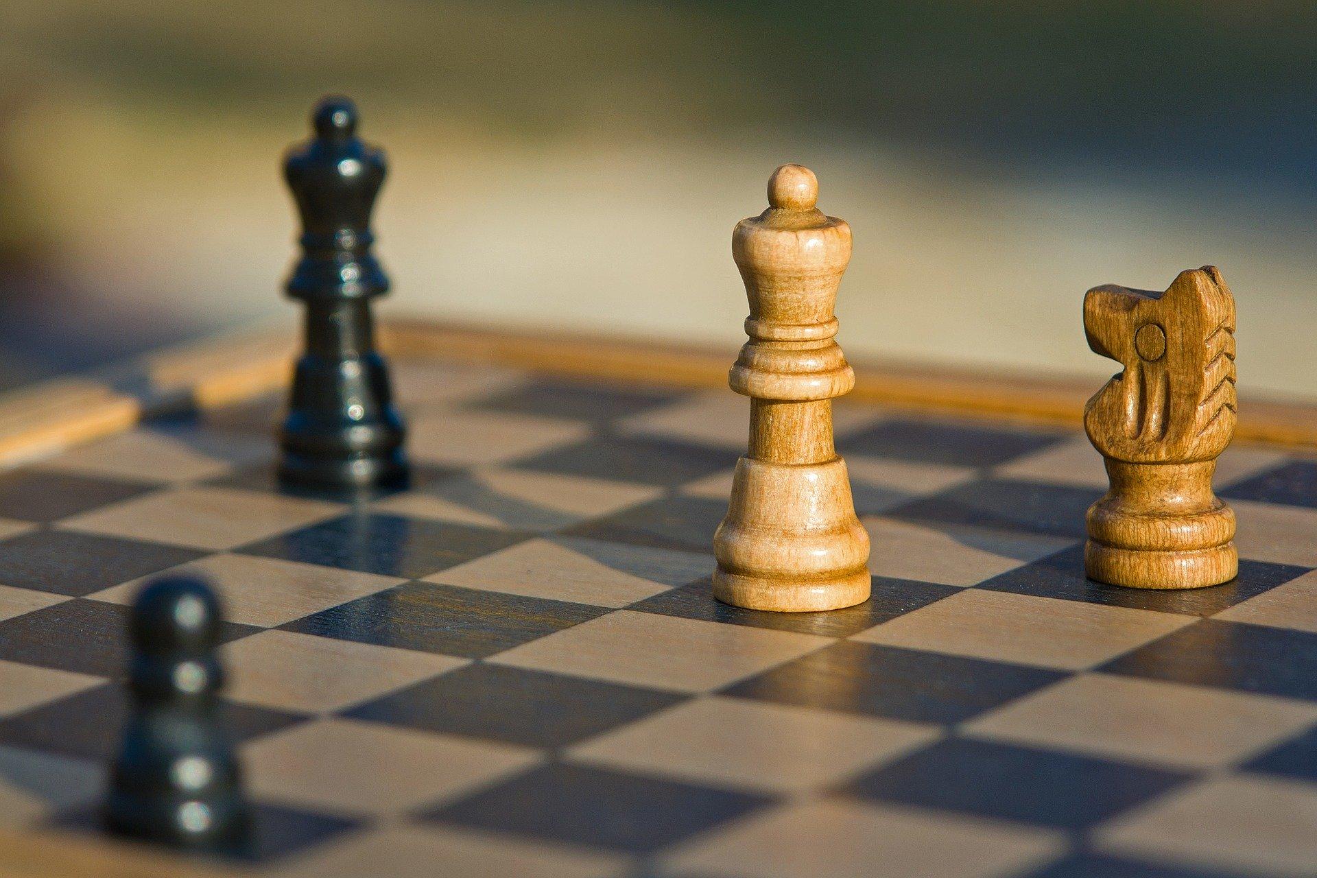 В Ярославле стартовали соревнования шахматистов