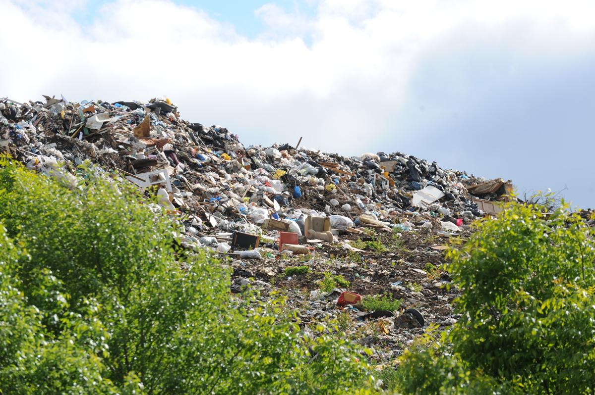 Ярославцам объяснили, как правильно жаловаться на незаконный сброс мусора