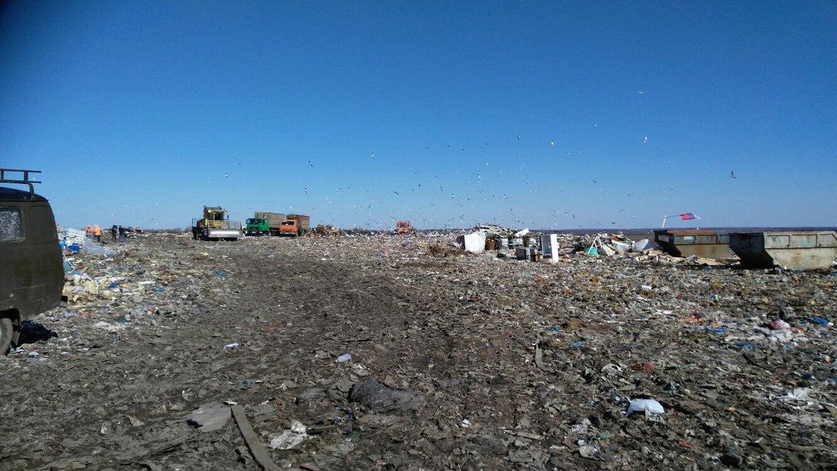 Договор о ввозе московского мусора в «Скоково» не будет продлен на 2019 год