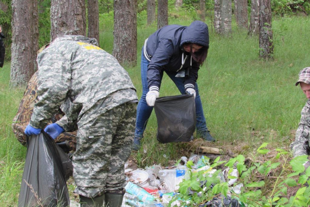 В лесах Ярославской области ликвидировали 18 крупных свалок