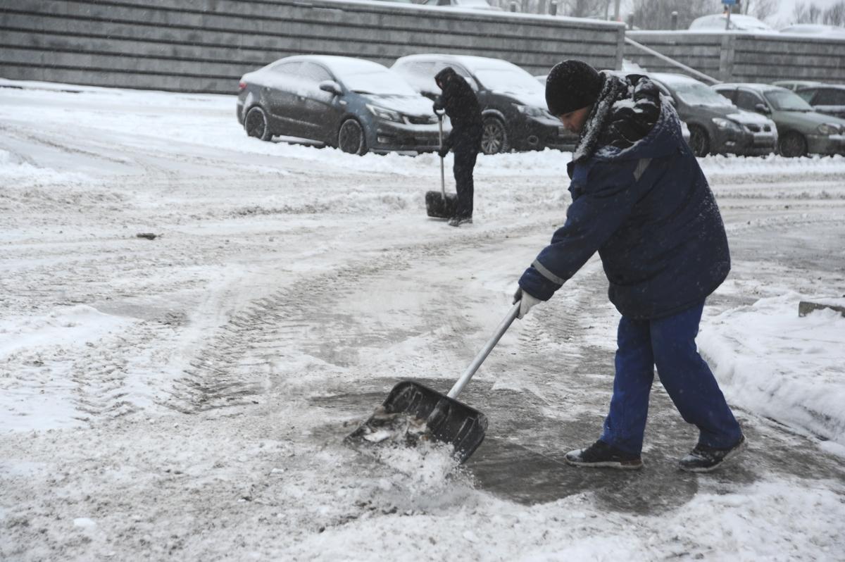 Мэр Ярославля раскритиковал уборку города от снега