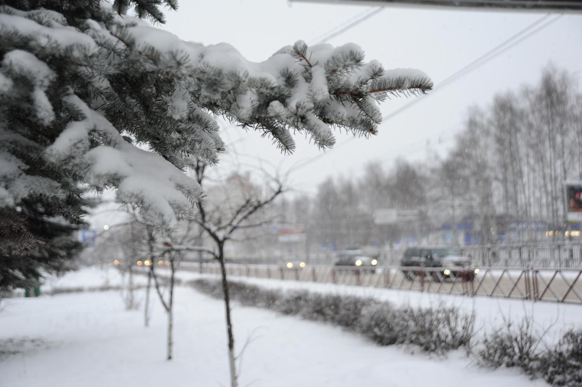 Владимир Волков: погода, видимо, специально ждала моего назначения