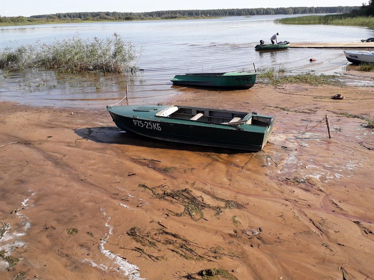 Житель Ярославской области распилил и сдал в металлолом найденную на берегу лодку