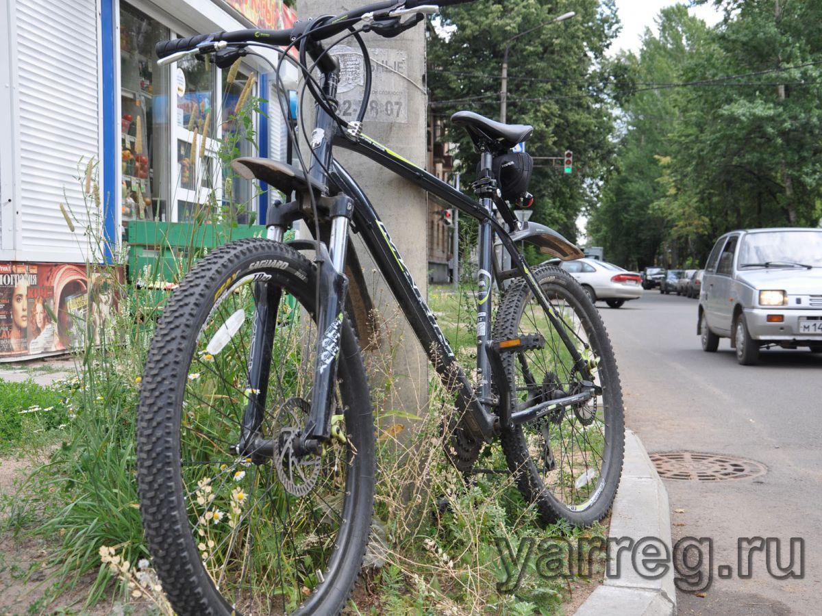 Развитие велодорожной инфраструктуры Ярославля обсудили в мэрии